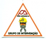 Grupo-intervencion-Portugal